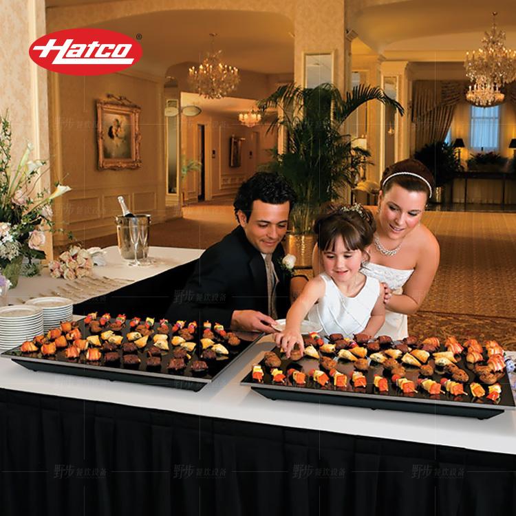 美国HATCO赫高 嵌入式黑玻璃保温板HBGB-4818标准瓦数850W 暖食板